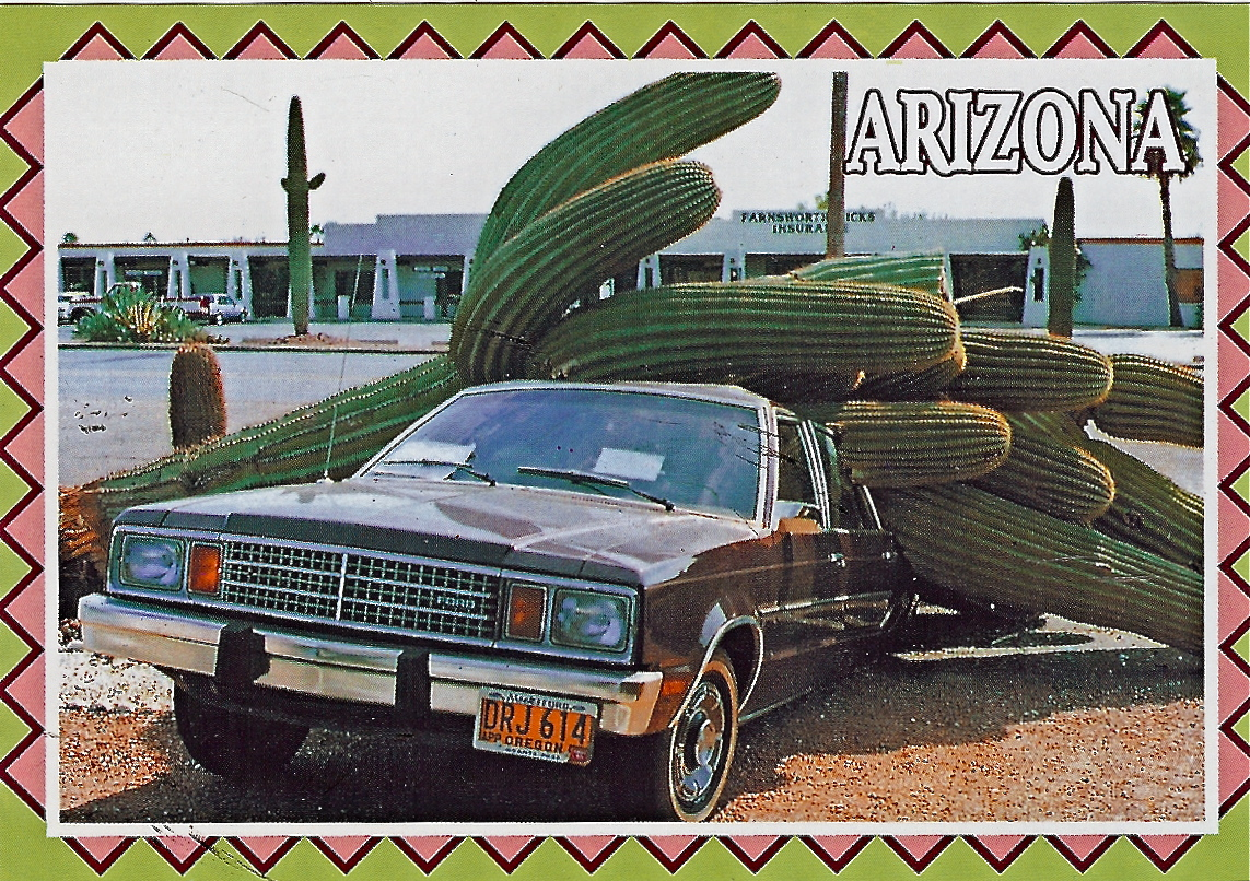 Arizona Car Crash Kills